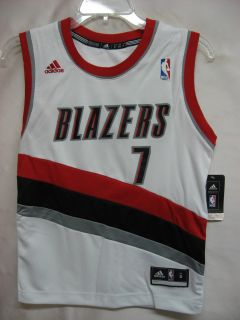 Brandon Roy Portland Trail Blazers White NBA Youth Revolution 30