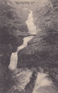 Buck Hill Falls PA Upper and Middle Falls Vintage Waterfall Postcard