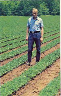 Jimmy Carter Standing in Peanut Fields C 1978 Postcard