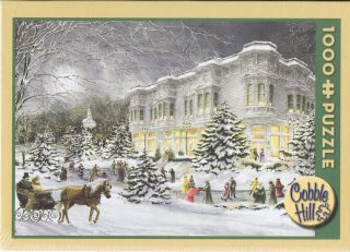 Cobble Hill Jigsaw Puzzle 1000 New Walter Campbell Village Inn