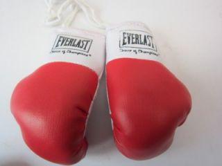 Everlast Mini Boxing Gloves Souvenir Replica 2pr Red New Hang Mirror