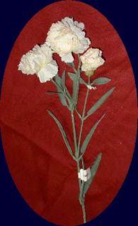 Ivory Silk Carnations Spray x3 Flowers Long Stem 1878