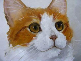Original Oil painting   portrait of a turkish van cat   by j payne