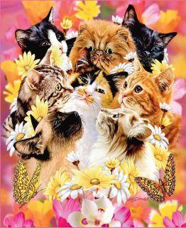 Signature Collection Cats Korean Soft Plush Raschel Mink Blanket Queen