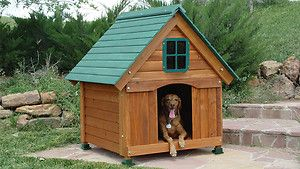 New Dog House Cedar Wood, Hinged Roof, Attractive Outdoor All Weather