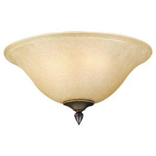 NEW 3 Light Ceiling Fan Lighting Kit, Oil Rubbed Bronze, Honey Glass