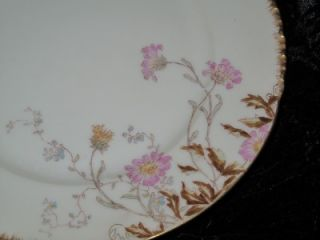 Superb Antique Charles Field Haviland Limoges Porcelain Plate Gilder