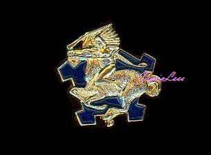 US Army 9th Cavalry Regt Military Lapel Pin Hat Pin