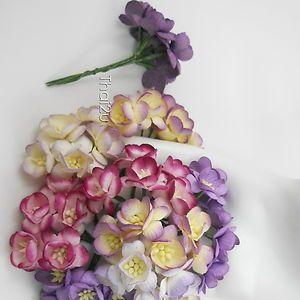 25 Paper Flower Cherry Blossom Basket Card Deco ZS3 601