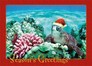 12 Hawaiian Holiday Card Hawaii Christmas Seasons Aloha