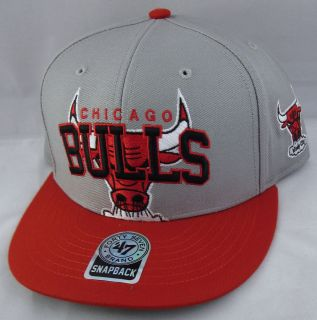 Chicago BULLS Snapback Cap Hat NBA Air Jordan DRose New 47Brand 2tone