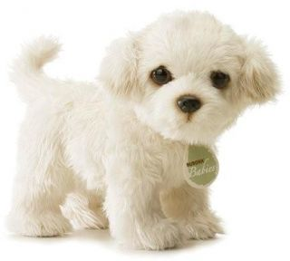 Mimi Realistic Toy Poodle Puppy Dog Aurora Babies New