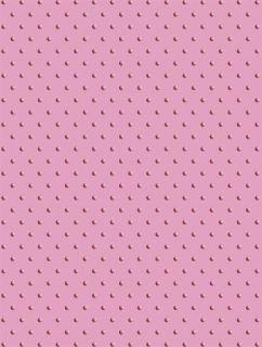 cuttlebug a2 swiss dots emboss folder