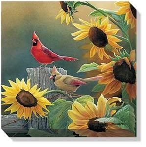 Sunny Side Up Cardinals Wrapped Canvas by Susan Bourdet 10 5 x 10 5