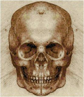 Da Vinci Skull Sketch Counted Cross Stitch Pattern Art