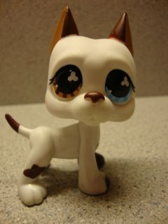 Littlest Pet Shop Lot ♥ Great Dane 577 Blue Brown Eyes