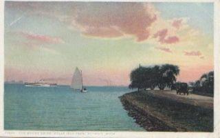 Detroit MI Shore Drive Belle Island Park Postcard