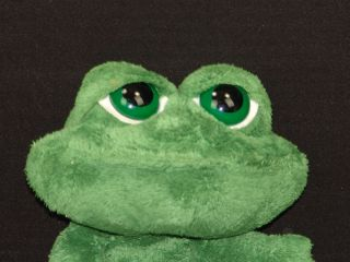 Big Eye Lil Peepers Smilling Frog Dermot Stuffed Animal Kiss Me