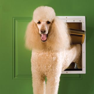 PetSafe Extreme Weather Pet Door Size Large Dog Door 3 Flap Design PPA