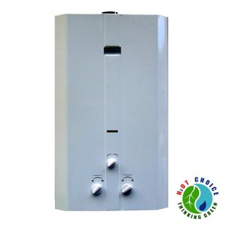 Natural Gas Tankless Water Heater 16 L with Power Vent