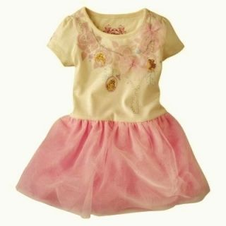 Theme Birthday Party Dress Up Disney Princess Dress Size 18 24 Month