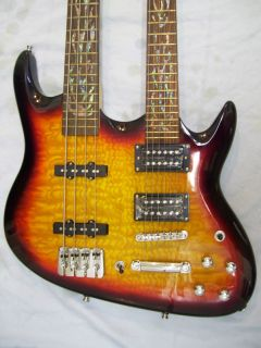 Double Neck Guitar and Bass Guitar 4 and 6 String