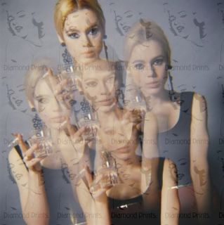 Cool RARE Edie Sedgwick Andy Warhol 60s Photo Picture