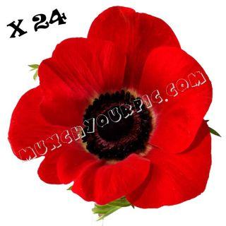 24 Red Poppy Flower Edible Rice Wafer Paper Cupcake Toppers Fairy Bun