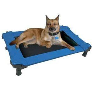 Pet Gear Petmate Durabed Elevated Pet Dog Cat Bed Cot