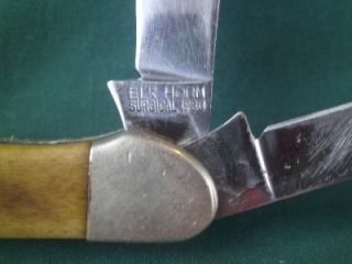 Elk Horn 1980 Surgical 2 Blade Folding Pocket Knife Taylor Japan