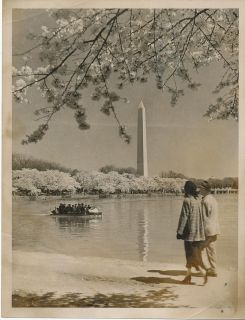 Lot of 4 Vintage Washington DC Photographs Never Listed Before