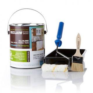 206 417 reclaim reclaim beyond paint one gallon restoration kit rating