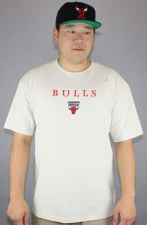Vintage Deadstock Chicago Bulls Small Applique LogoCream : Karmaloop