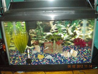 Aquarium Fish Tank Decorations Tank 10 Gallon Use