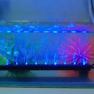 Eclairage Lampe Lumiere Bleu 12 LED 31 cm PR Aquarium Fish Tank
