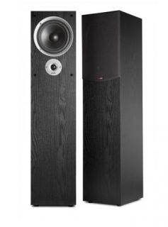 R300 Home Theater Tower Floor Standing Speaker 747192112639