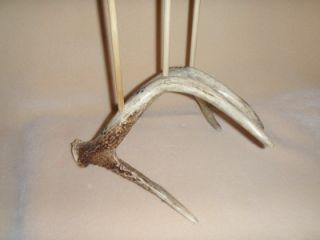 Native American Style Flute Stand Deer Antlerd Carved Wolf Tracks OOAK
