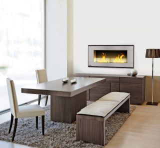 Mount Vent Free Bio Fuel Ethanol Fireplace Modern Linear Gas
