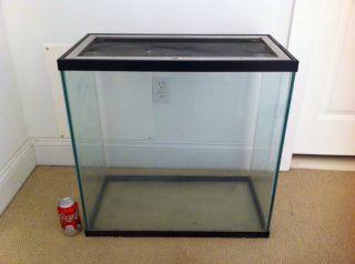 55 gallon fish tank top fin 55 gallon starter kit for 55 gallon fish tank lid