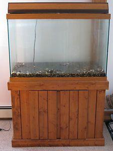 55 Gallon Fish Tank 187 Top Fin 174 55 Gallon Starter Kit