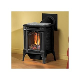 Direct Vent Cast Iron Gas Stove Black Natural Gas GDS20N