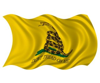 Gadsden Waving Flag DonT Dont Tread on Me American USA Vinyl Sticker