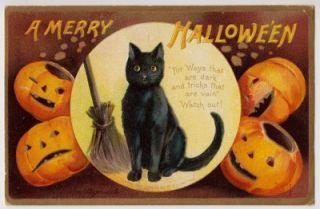 Halloween Signed Ellen Clapsaddle Black Cat in Moon Jack O Lanterns