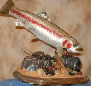 Rainbow trout taxidermy mount fish fly fishing high quality habitat