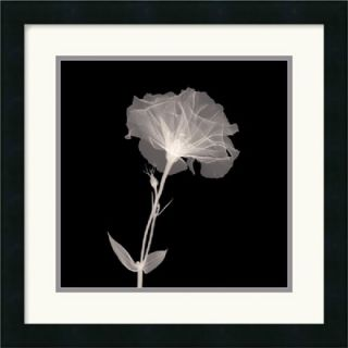 Bud in Bloom Framed Art Print Framed Decorative Art Print   18 x 18