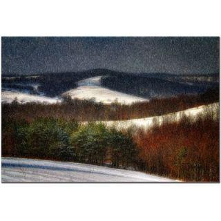 Mountain Snow Storm by Lois Bryan, Canvas Art   22 x 32