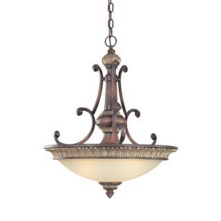 Dolan Designs Multnomah 3 Light Pendant   2884 62