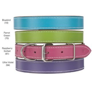 Casual Canine Leather Dog Collar