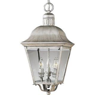 Progress Lighting Andover Incandescent Hanging Outdoor Lantern in