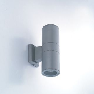 Eurofase Two Light Outdoor Wall Sconce with Clear Shade in Grey
